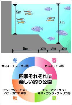 海釣り公園情報