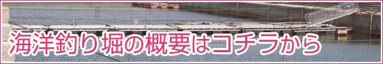 海洋釣り堀釣果情報