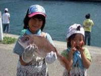 釣り体験(一匹から料金がかかります)